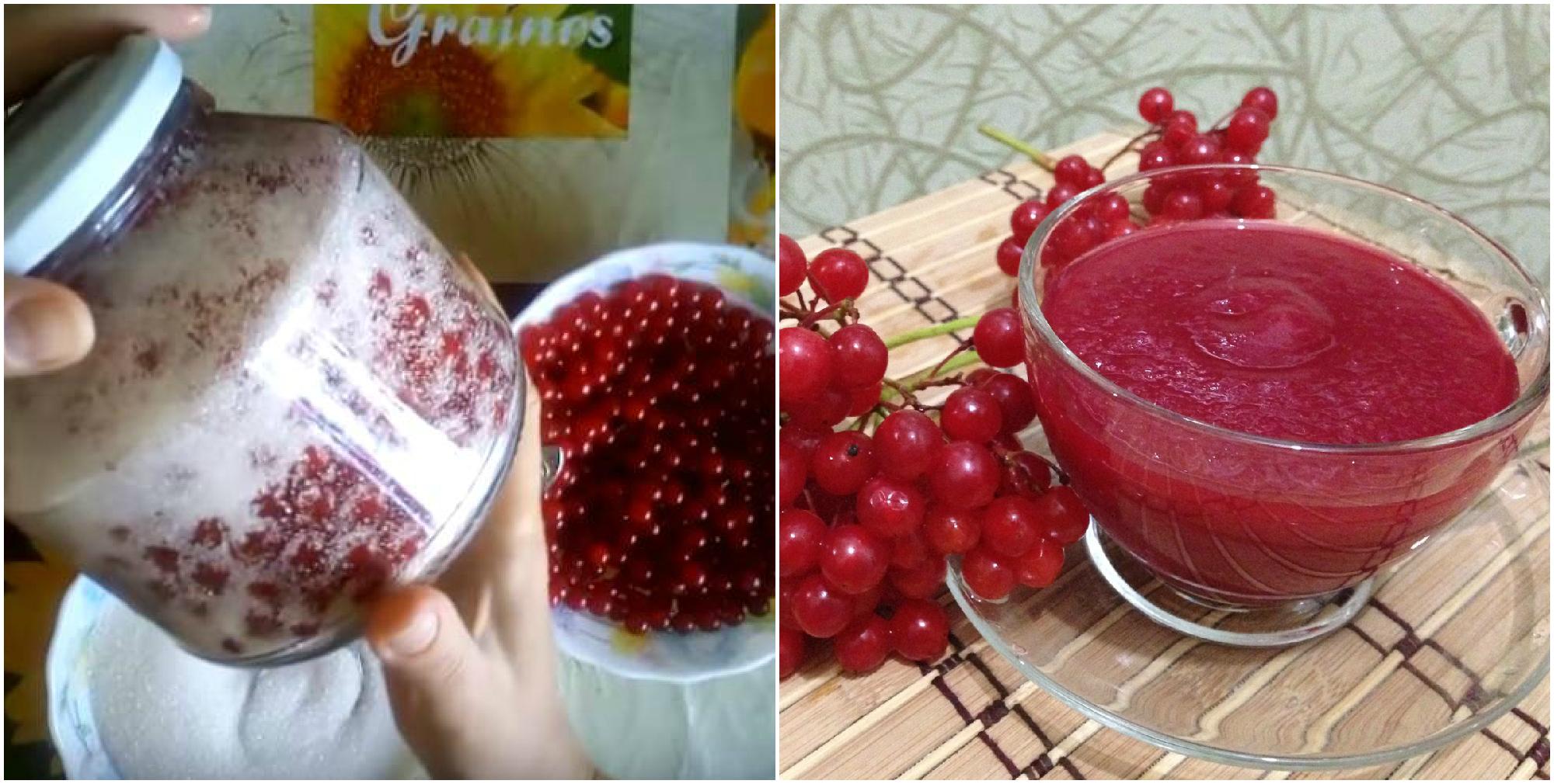 Калина — дуже корисна ягода для здоров'я. Кілька гарних рецептів для заготівлі на зиму