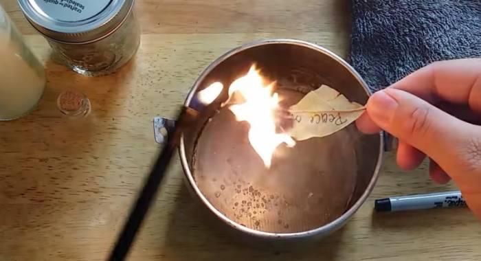 На свята була у сусідки і побачила, як вона підпалює вдома лавровий лист. Тепер роблю так само!