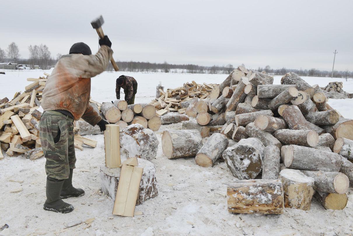 Тато і його 2 сина нарубали 80 машин дров. І роздали їх тим, у кого немає грошей на опалення!