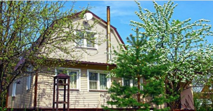 3берігайте…Які дерева ні в якому разі не можна садити біля хати, а які – треба
